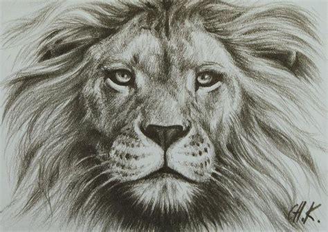 resultado de imagem para amazing drawing lions animals