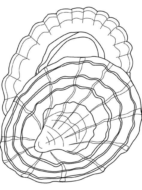 http www ahiva info colorear el arte de ense 241 ar colorear concha