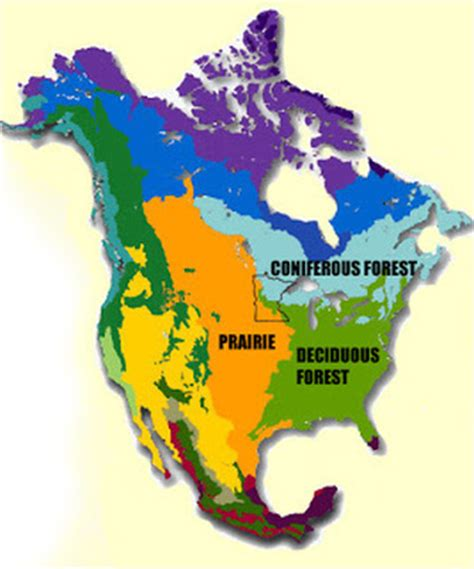 biome map with country names physical features my minnesota created by l