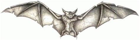 bat symbolic meanings illusion rebirth dreams