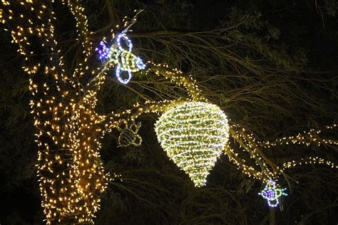 phoenix zoo lights ticket prices zoolights holiday display at the phoenix zoo