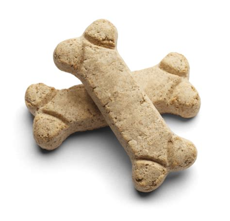 what treats are for puppies 5 reasons your will you for baking treats care2 healthy living