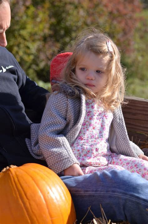 Parents Like Us Festival For Children And Parents by Great Family Festivals In Indiana For The Fall And Us