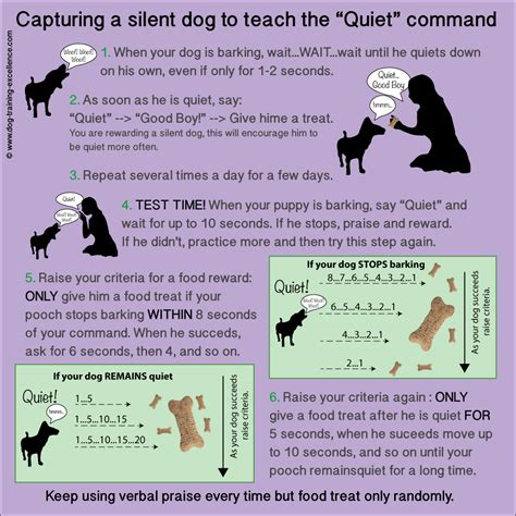 how to my to stop barking how to stop barking teach your the quot quot command