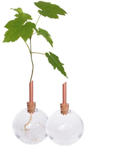 Single Stem Glass Vase by Scandinaviaform Single Stem Glass Vase Glasilium Rawluxe