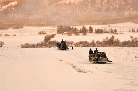 christmas tree farm utah ogden bailey s farm sleigh rides liberty utah www mountainluxury ogden valley and