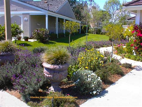 grass front yard triyae xeriscape small backyard various design
