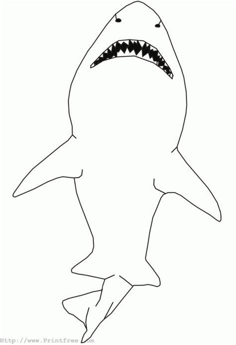 shark outline coloring page outline shark coloring pages