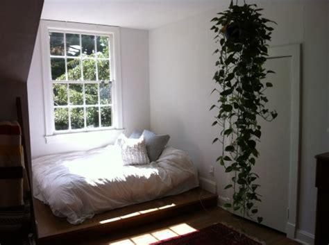 plants for the bedroom the cozy bedroom