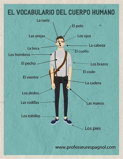 el cuerpo humano el vocabulario del cuerpo human professeuresspagnol com spanish learning