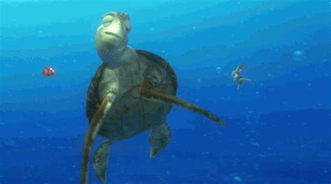 ocean life animated gif finding nemo animation gif by disney pixar find share