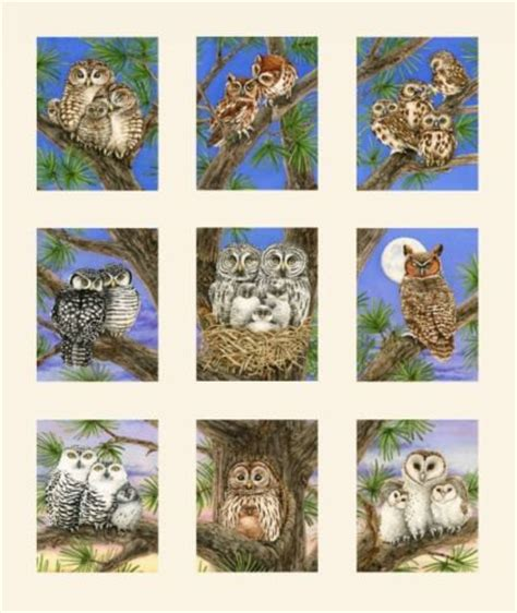 Owl Quilting Fabric by Owl Families Panels Cotton Quilting Fabric Elizabeth S
