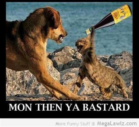 Funny Scottish Memes - scottish memes