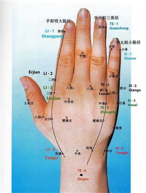il fegato porta dolore shu antichi della mano e polso