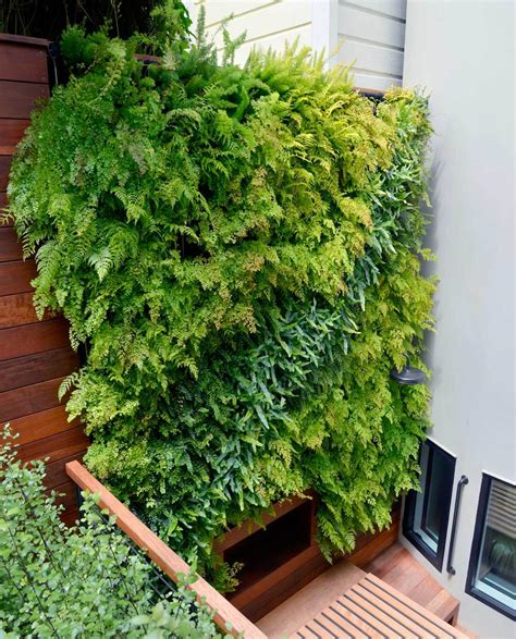 wall garden systems vertical wall garden systems 28 images agro wall