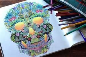 enchanted forest coloring book review skull drawing coloured in by artist bev ford in july 2015
