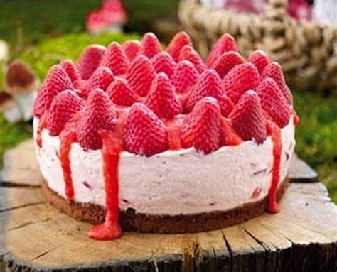 kuche guten appetit 1000 bilder zu kuchen auf schokolade