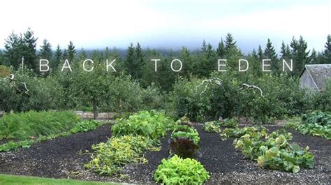 Back To Gardening by Back To Gardening Journey To Sustainability