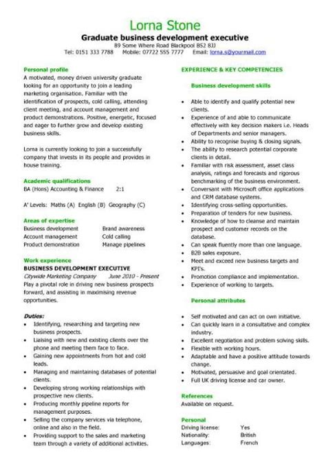 graduate cv template word executive cv template resume professional cv executive