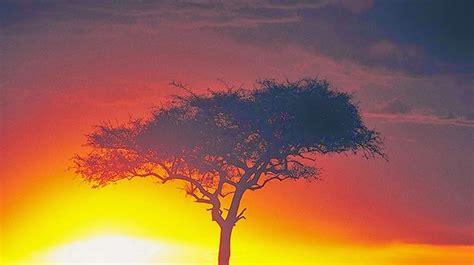 descargar imagenes naturales gratis im 225 genes arte pinturas fotograf 237 as de paisajes naturales