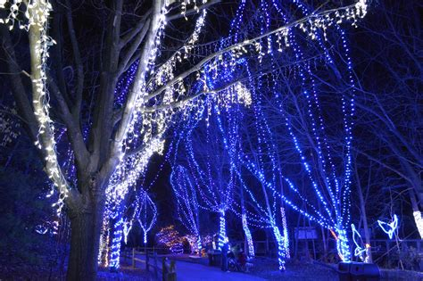 Michigan Celebrates With Traditional Spirit Christmas Columbus Zoo Lights 2014
