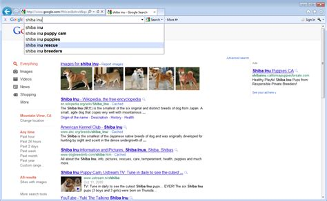 search results for download image download google toolbar 7 1 for ie with improved instant