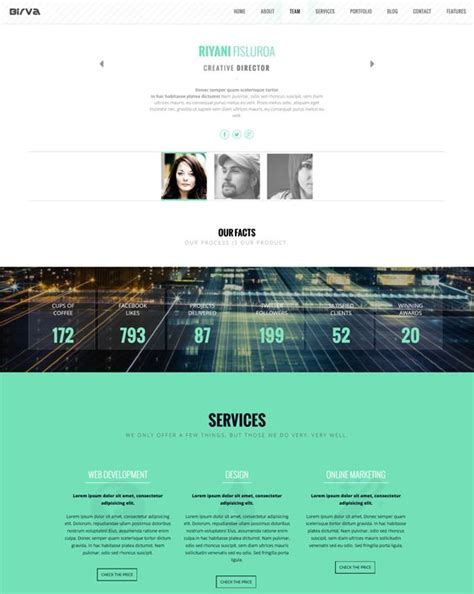 drupal one page themes 8 best 8 more of the best one page drupal themes images on