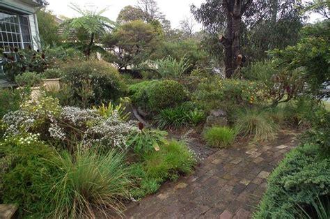 Australian Native Front Garden Gardens Pinterest Australian Garden Ideas