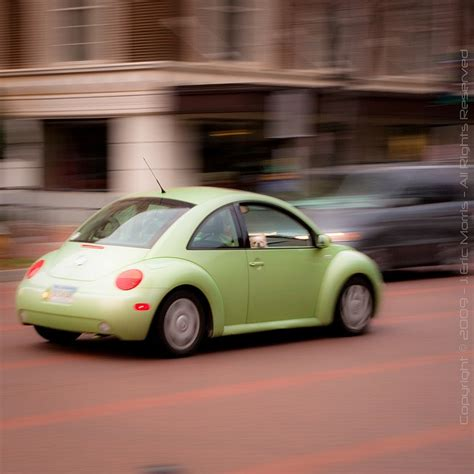 punch buggy car convertible 15 best images about slug bug no punch backs on pinterest
