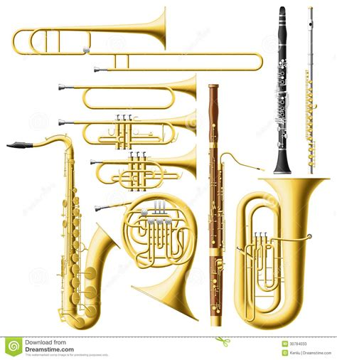 wind section instruments wind instruments stock vector illustration of band brass