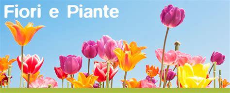 fiori torino fiori a torino piante a torino fiori e piante torino servizi