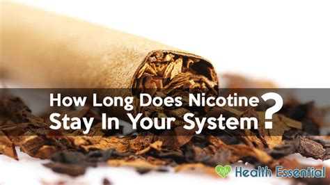 Does Detox Take Out Of Your System by How Does Nicotine Stay In Your System Blood Urine