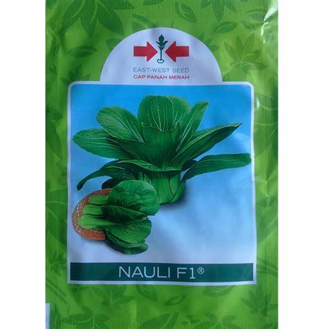 Daun Sirih Merah Kering Kemasan 100 Gram benih panah merah sawi nauli f1 10 gram jual tanaman