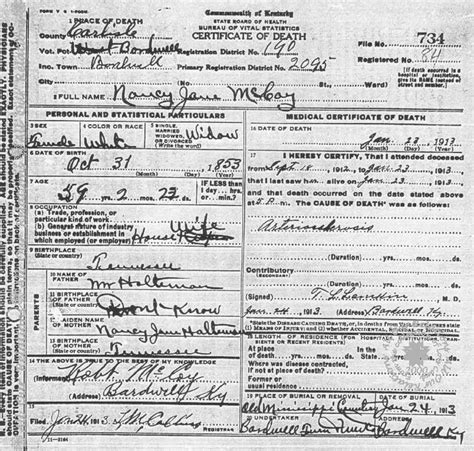 Wood County Marriage Records Nancy J Mccoy Certificate Hatfields And Mccoy S