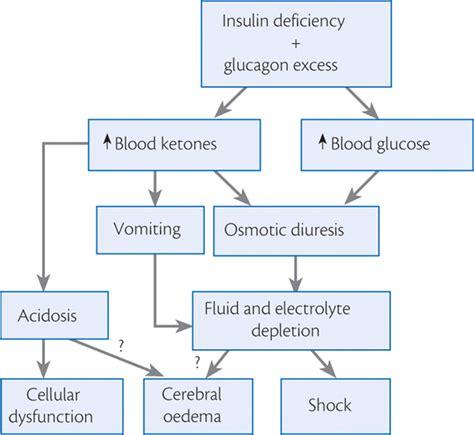 cystic fibrosis pathophysiology diagram diabetic ketoacidosis dka jess brantner wvu dietetic