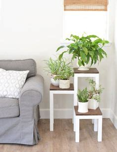 6 small scale decorating ideas for empty corner spaces 6 small scale decorating ideas for empty corner spaces