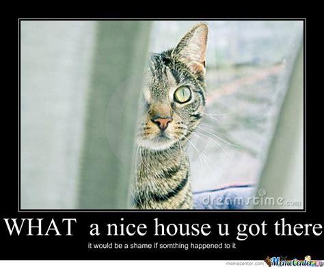 Funny Stalker Memes - 25 best ideas about stalker meme on pinterest gangsta