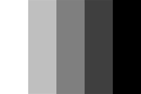black and white with color from black to white color palette
