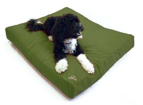 hypoallergenic dog beds best hypoallergenic dog beds dogvills