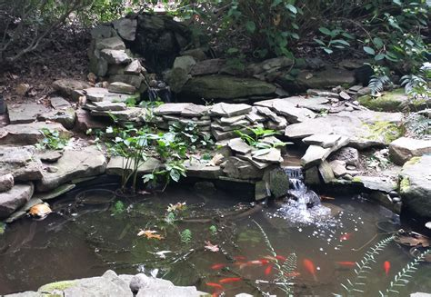 how to repair a pond leak a gardener s delight