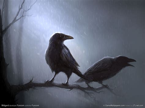 wallpaper black bird wallpapers hd desktop wallpapers free online bird
