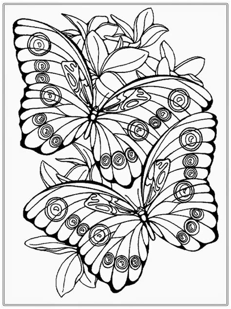 butterflies coloring book for adults books coloring pages butterfly realistic coloring pages