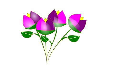 imagenes de flores dibujos dibujos de flores revista entretiene