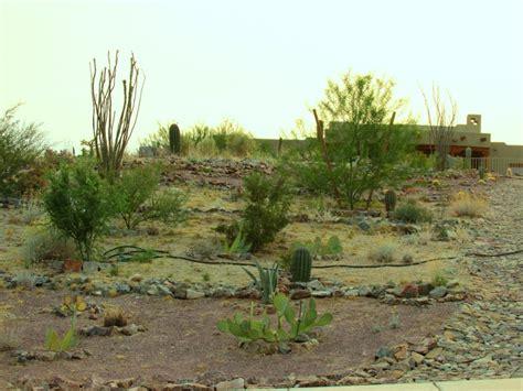 Landscape Rock Arizona Landscape Rock Arizona Desert Xeriscape
