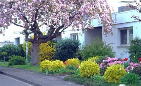 vorgarten neu gestalten anlegen vorgarten gestalten pflegeleicht wapdesire wapdesire