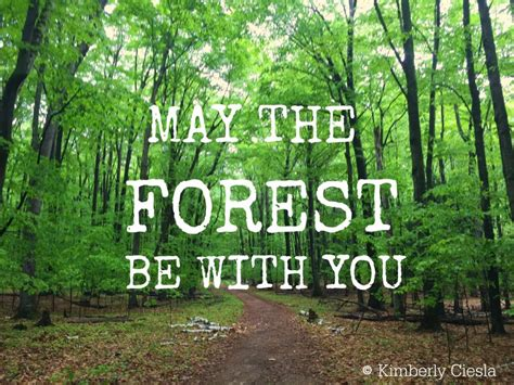 The Forest Would Be A Place Quote Quote May The Forest Be With You Upnorth Kcarisma