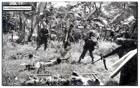 vietnam war illustrated history relive the times images of war