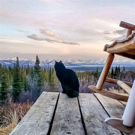 alaska cabin 25 best ideas about alaska cabin on alaskan