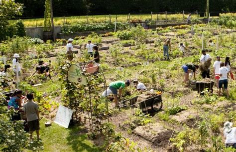 New York Botanical Garden Classes Nybg S Edible Academy To Be Site Of Partnership With Blue Apron