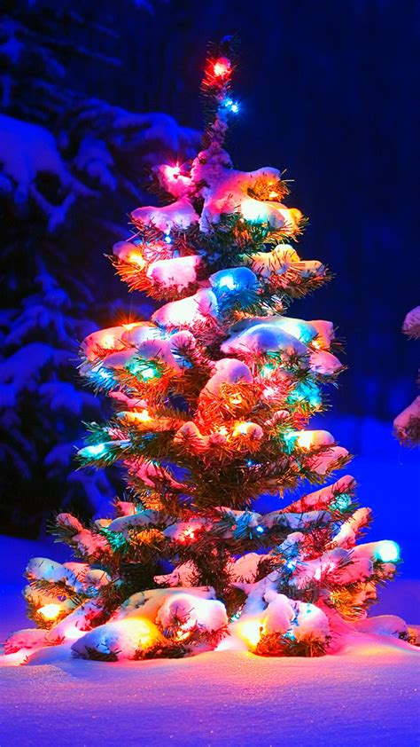 iphone hd christmas tree wallpaper awasome tree hd wallpaper for iphone and android phonewallpapers